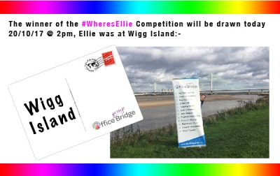 Office Bridge Group #WheresEllie competition reveal week 1 - Wigg Island
